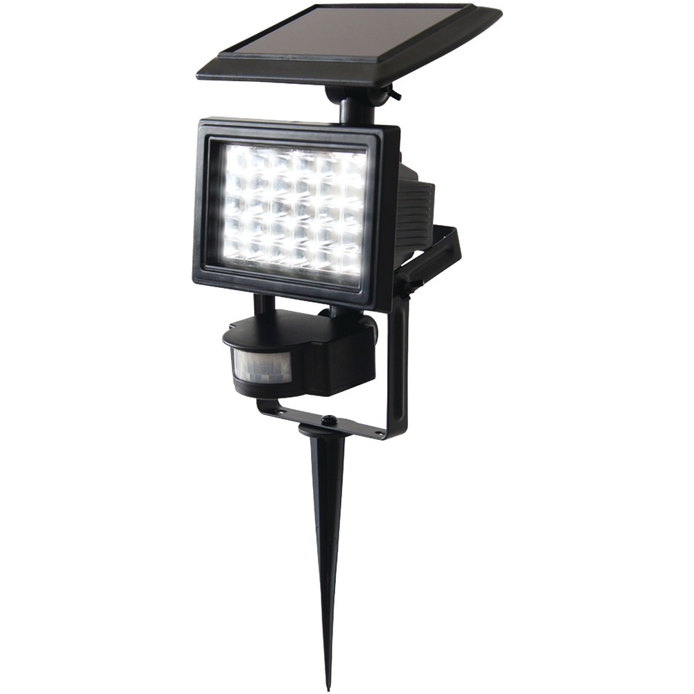 ECOTHINK 155029 | 30-LED Solar Motion-Sensor Light