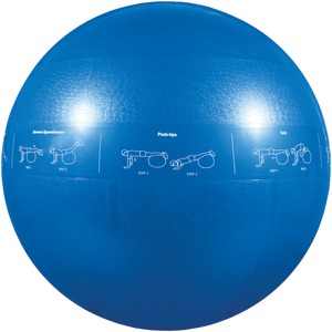 Professional Stability Ball (55cm Blue)